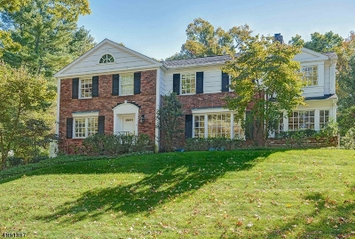 Millburn Twp. Single Family Home For Sale: 22 Troy Dr