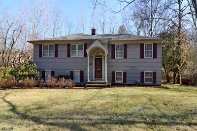 Millburn Twp. Single Family Home For Sale: 474 White Oak Ridge Rd