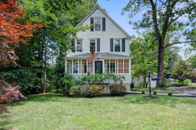 New Providence Boro Single Family Home For Sale: 320 Union Ave