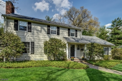 Millburn Twp. Single Family Home For Sale: 20 Falmouth St