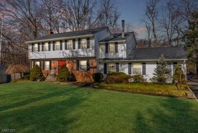 Florham Park Boro Single Family Home For Sale: 55 Townsend Dr