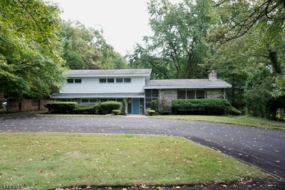 Clark Twp. Single Family Home For Sale: 623 Raritan Rd