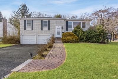 Millburn Twp. Single Family Home For Sale: 1 Birchwood Dr