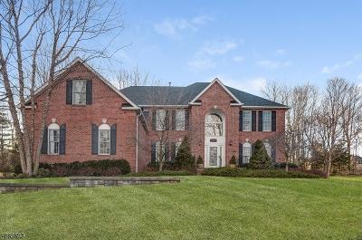Randolph Twp. Single Family Home For Sale: 38 Barbara Dr