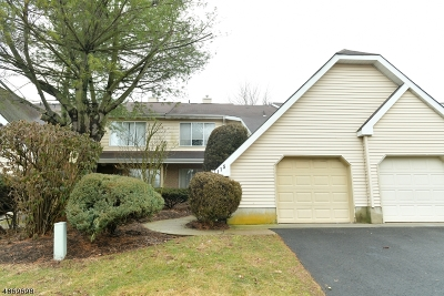 North Brunswick Twp. Condo/Townhouse For Sale: 115 Nathan Dr