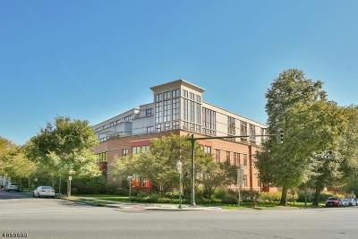 Glen Ridge Boro Twp. Condo/Townhouse For Sale: 85 Park Ave Unit 108 #108