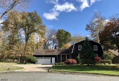 New Providence Boro Single Family Home For Sale: 47 Lancaster Ct