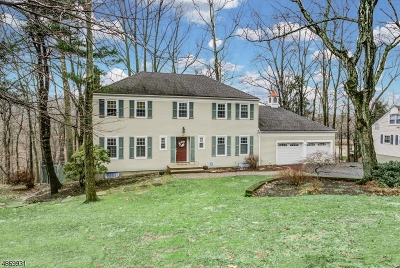 Berkeley Heights Twp. Single Family Home For Sale: 39 Ridge Dr