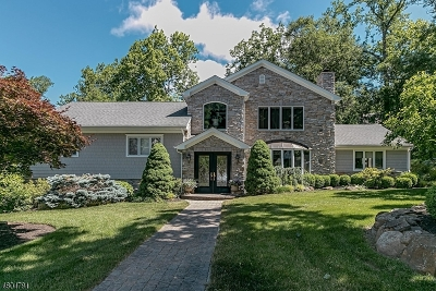 Millburn Twp. Single Family Home For Sale: 33 Holly Dr