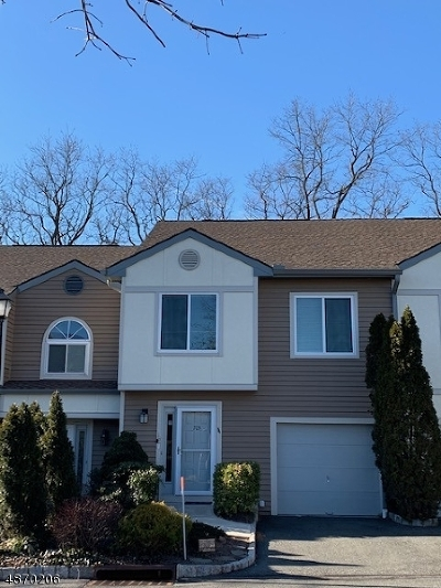 Springfield Twp. Condo/Townhouse For Sale: 705 Park Place