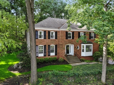 Chatham Twp. Single Family Home For Sale: 47 Lisa