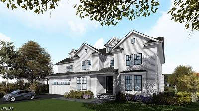 Millburn Twp. Single Family Home For Sale: 17 Dryden Ter