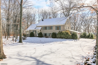 WATCHUNG Single Family Home For Sale: 58 Skyline Dr
