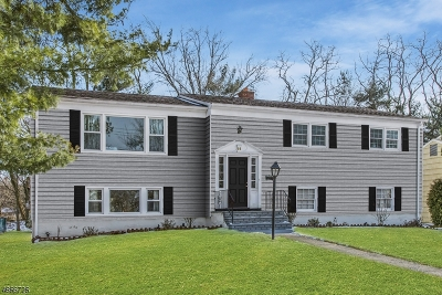 Millburn Twp. Single Family Home For Sale: 37 Oval Rd