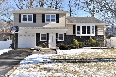 Fanwood Boro Single Family Home For Sale: 80 Shady Ln