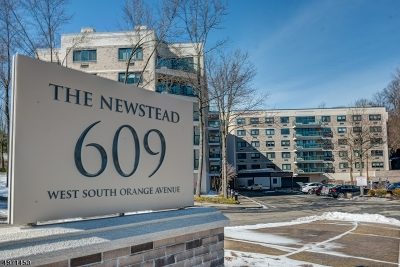 South Orange Village Twp. Condo/Townhouse For Sale: 609 S Orange Ave #E