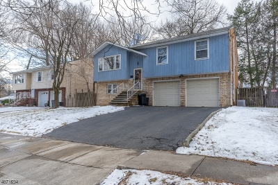 Roselle Boro Single Family Home For Sale: 508 Walnut St