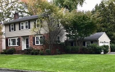 Cranford Twp. Single Family Home For Sale: 42 Brookdale Pl
