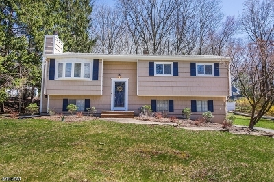 Randolph Twp. Single Family Home For Sale: 1 Pamela Dr