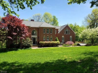 Randolph Twp. Single Family Home For Sale: 17 Ursula Ct