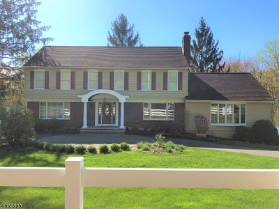 Randolph Twp. Single Family Home For Sale: 34 Everdale Rd
