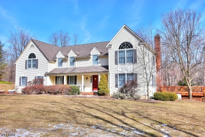 Randolph Twp. Single Family Home For Sale: 5 Knights Bridge Dr