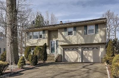 Scotch Plains Twp. Single Family Home For Sale: 2251 Elizabeth Avenue
