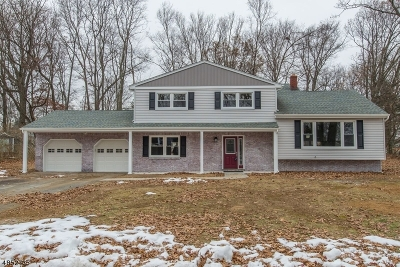 Randolph Twp. Single Family Home For Sale: 9 Foxwood Ln