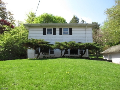 Roxbury Twp. Single Family Home For Sale: 12 Rogers Dr