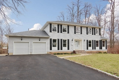 Westfield Town NJ Single Family Home For Sale: $850,000