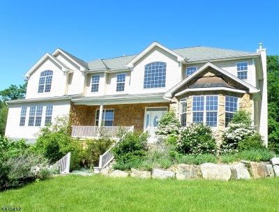 Denville Twp. Single Family Home For Sale: 29 Rock Ridge Road