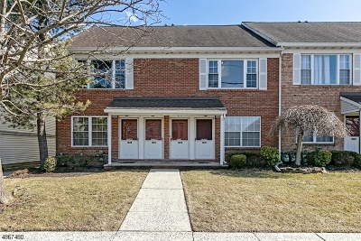 Scotch Plains Twp. Condo/Townhouse For Sale: 1027 Cellar Ave