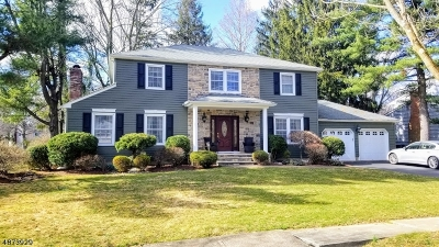 East Brunswick Twp. Single Family Home For Sale: 1 Independence Dr