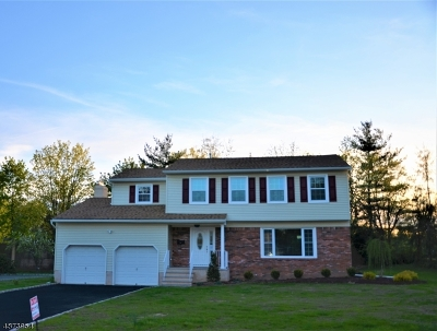 Florham Park Boro Single Family Home For Sale: 1 Manker Dr