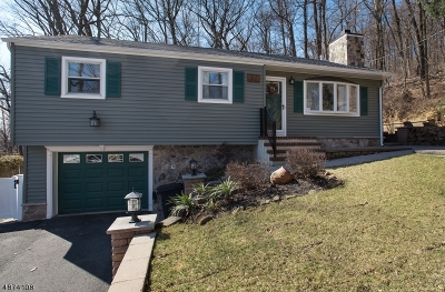 Scotch Plains Twp. Single Family Home For Sale: 172 Mountainview Ave