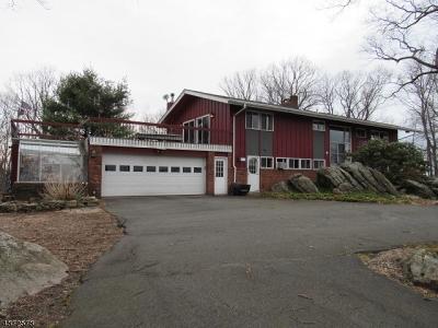 Dover Town Single Family Home For Sale: 7 Rockridge Ter