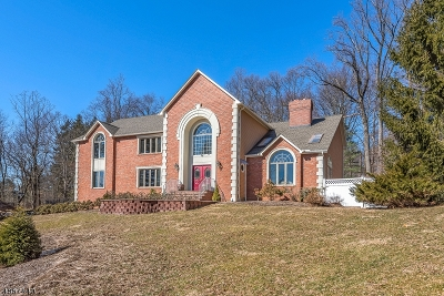 Morris Twp. Single Family Home For Sale: 3 Devonshire Ct