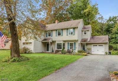 Parsippany-Troy Hills Twp. Single Family Home For Sale: 55 Red Gate Rd