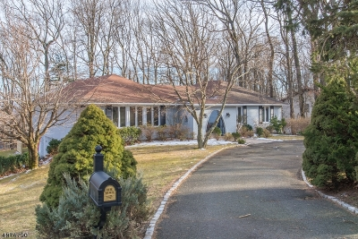 Mountainside Boro Single Family Home Active Under Contract