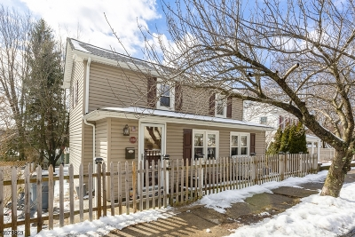 Boonton Town Single Family Home For Sale: 1036 Birch St