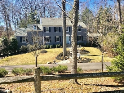 Plainfield City Single Family Home For Sale: 1716 Sleepy Hollow Lane