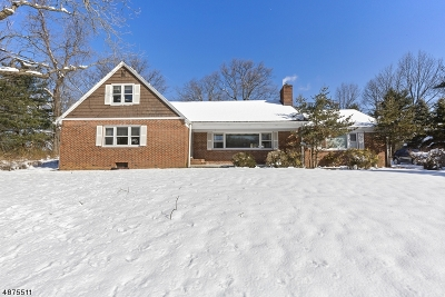 Mountainside Boro Single Family Home For Sale: 448 New Providence Rd