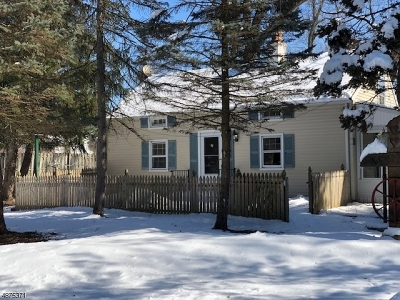 Livingston Twp. Single Family Home For Sale: 57 Walnut St