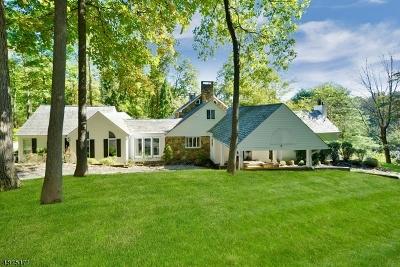 Morris Twp. Single Family Home For Sale: 22 Jonathan Smith Rd
