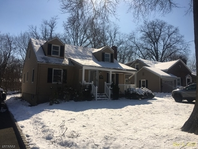 Morris Twp. Single Family Home For Sale: 45 Mill Rd