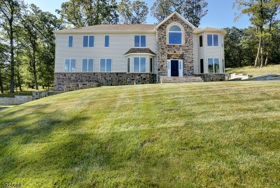 Parsippany-Troy Hills Twp. Single Family Home For Sale: 24 Beverly St