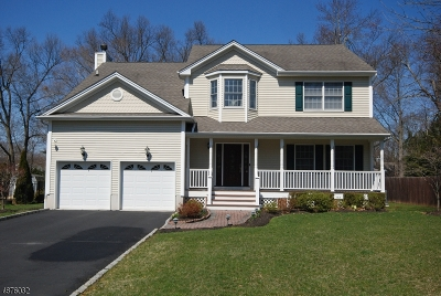 Berkeley Heights Twp. Single Family Home For Sale: 18 Kline Pl