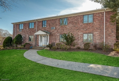 Springfield Twp. Condo/Townhouse For Sale: 60-A Troy Dr Bldg 19 #A