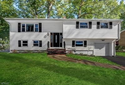 Livingston Twp. Single Family Home For Sale: 68 Trocha Ave