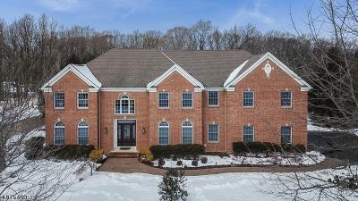 Randolph Twp. Single Family Home For Sale: 3 Quail Run